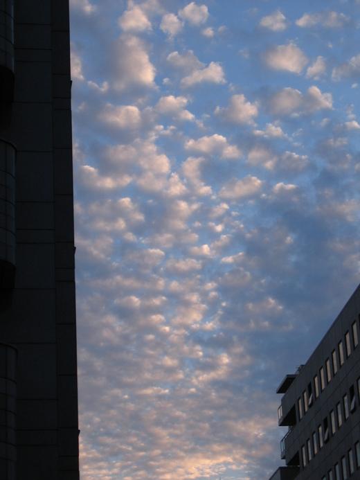 秋から冬の雲_b0190342_13111980.jpg