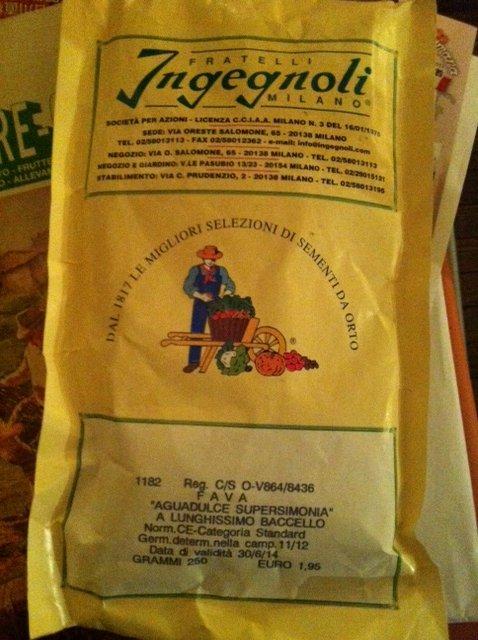 イタリアから生食用蚕豆 INGEGNOLI社の種入りました_c0222448_1718791.jpg