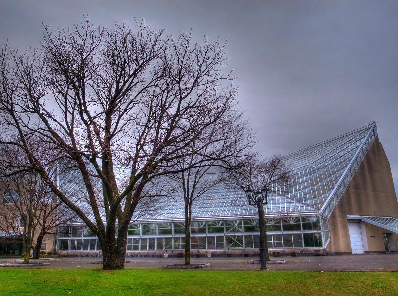 朝の公園 図書館へ _a0160581_17582342.jpg