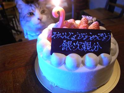 祝いの宴_a0180681_2241292.jpg