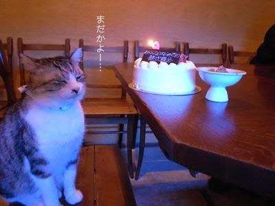 祝いの宴_a0180681_228157.jpg