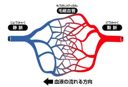 http://pds.exblog.jp/pds/1/201111/25/04/a0228304_1791736.jpg