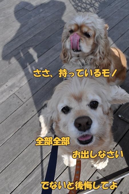 b0067012_20421539.jpg