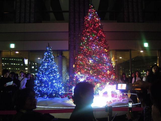 不協和音定演、クリスマスツリー点灯式_f0115027_15105310.jpg
