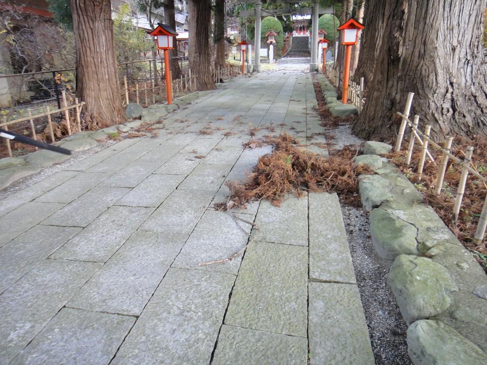 木枯らし大暴れ_c0111229_16463984.jpg