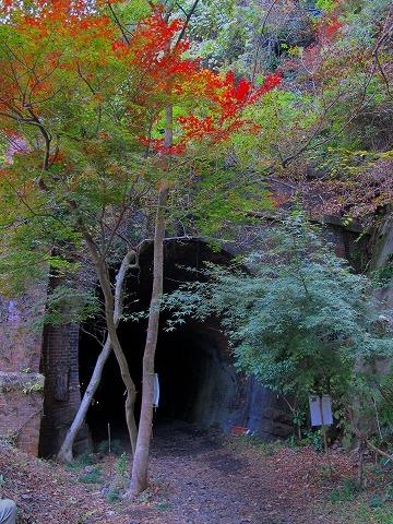愛岐トンネル_c0077531_22322271.jpg