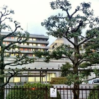 富山市へ打合せに_a0210340_19185880.jpg