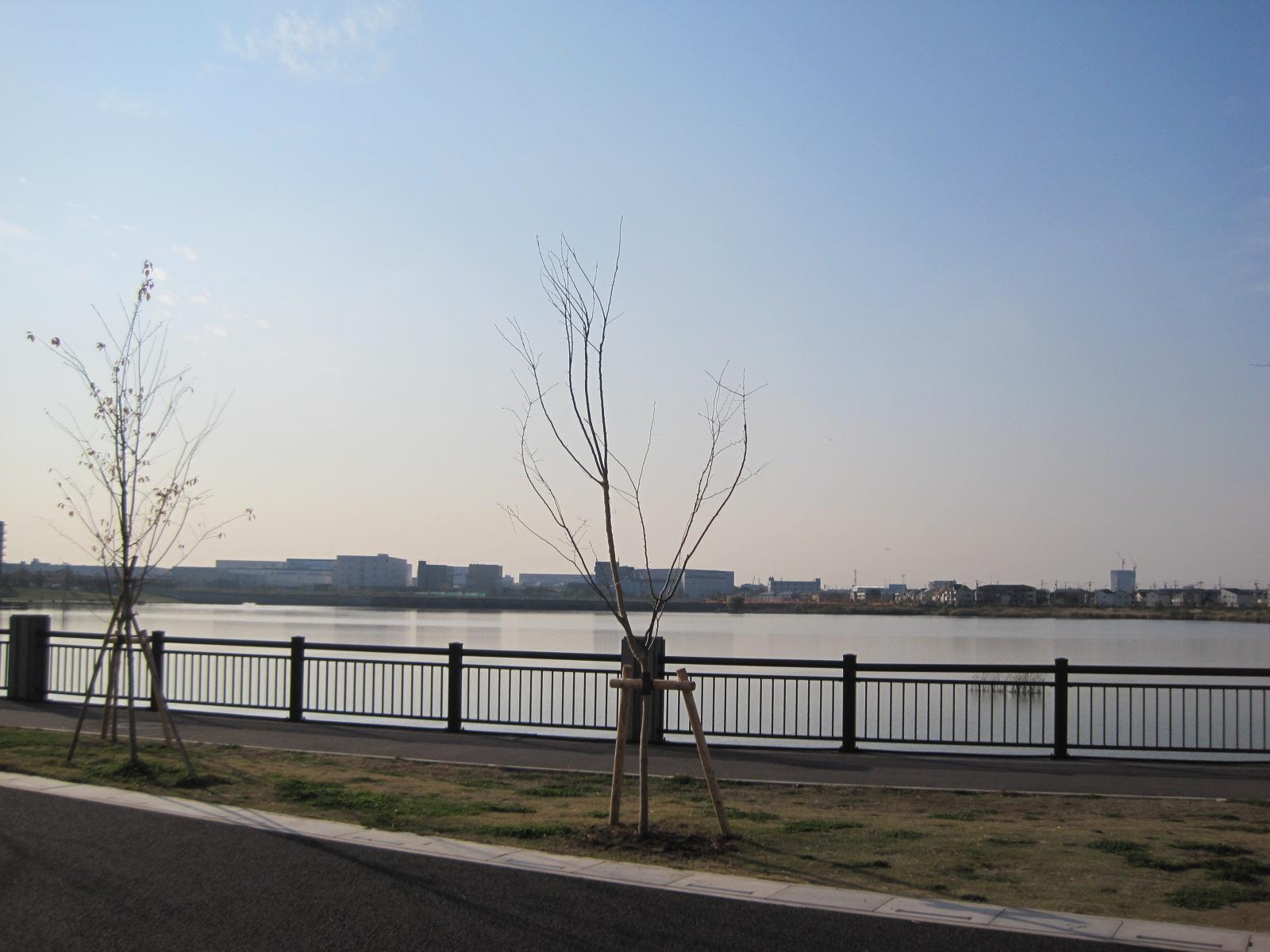 越谷レイクタウン~IKEA新三郷店_f0236260_23262751.jpg