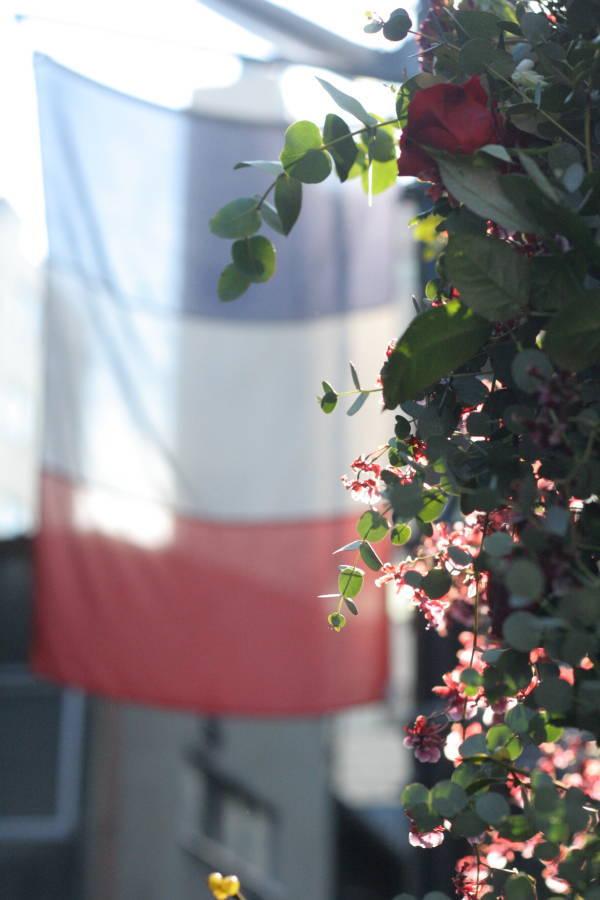 秋の終わりと冬のはじめに 紅葉と白雪 青山レ・クリスタリーヌ様の装花_a0042928_22194053.jpg