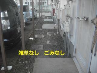 f0031037_21361738.jpg