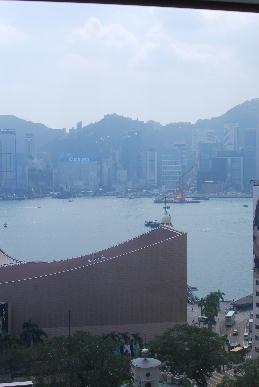香港飲茶_a0175348_15364886.jpg