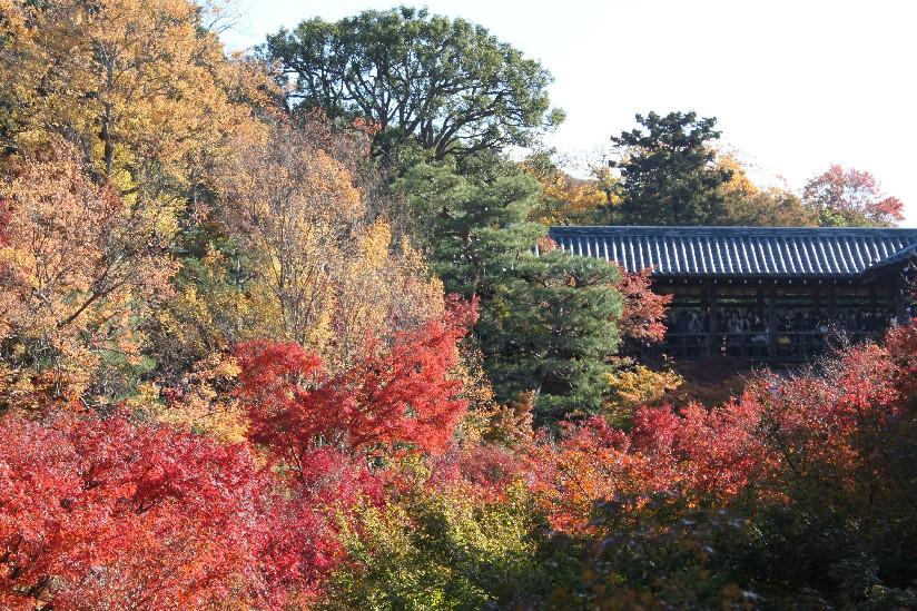 東福寺_c0180971_2112199.jpg