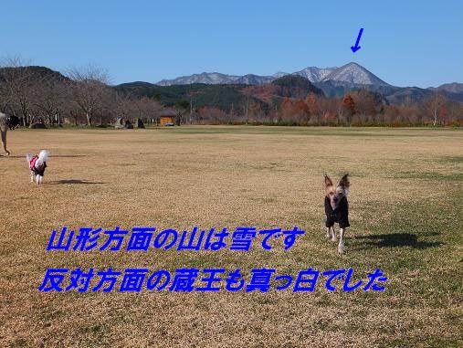 f0179203_14314980.jpg