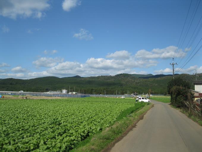 greengreenvillage日田へ~☆_a0125419_2394862.jpg
