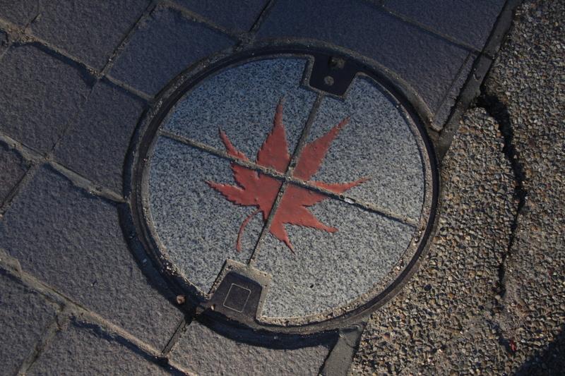 宮島の紅葉を追ってⅢ_b0190540_1627599.jpg