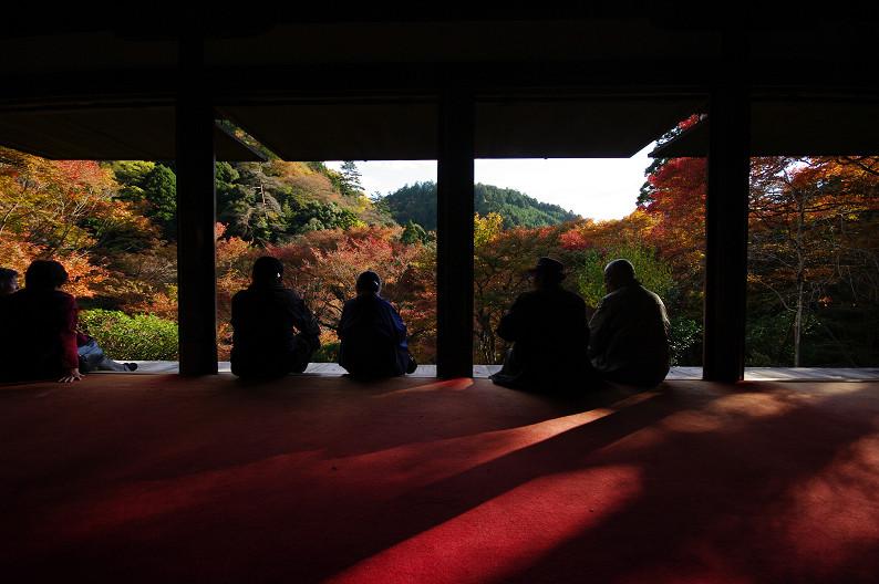 紅葉 ~高山寺~_f0152550_22343248.jpg