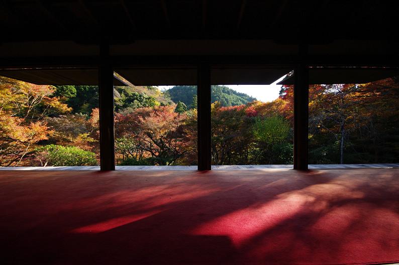 紅葉 ~高山寺~_f0152550_22344474.jpg