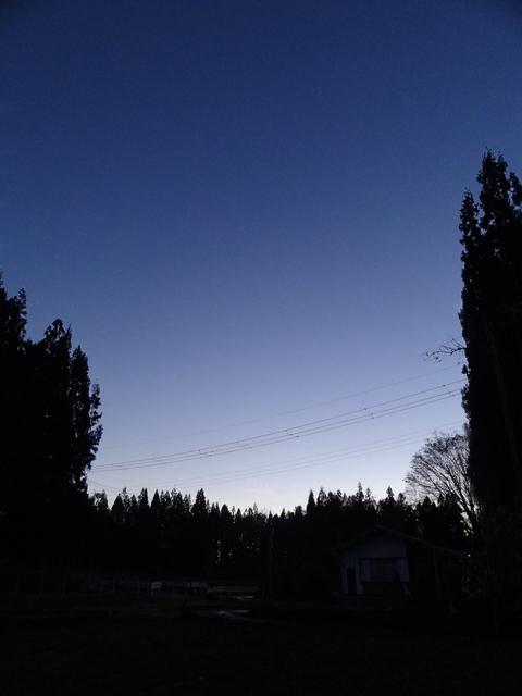 a0233551_16125970.jpg