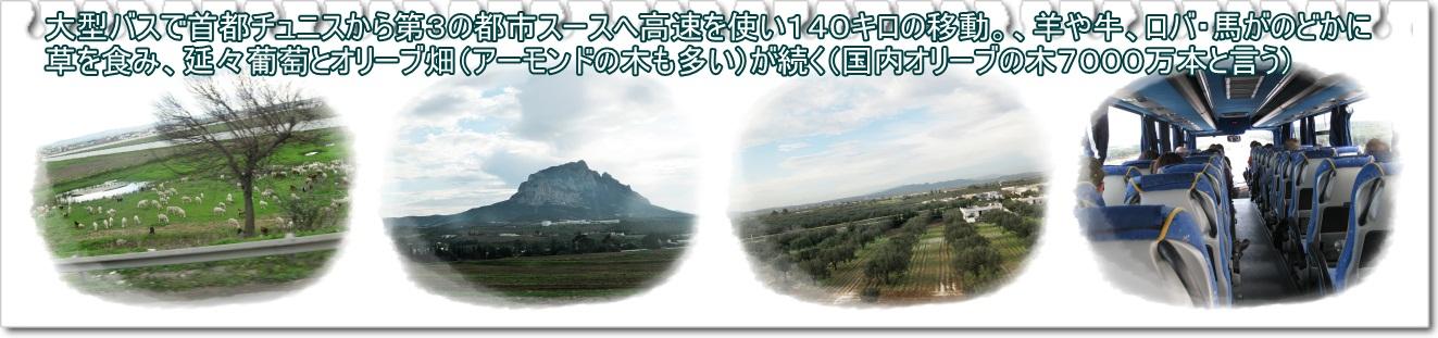 a0052666_10291732.jpg