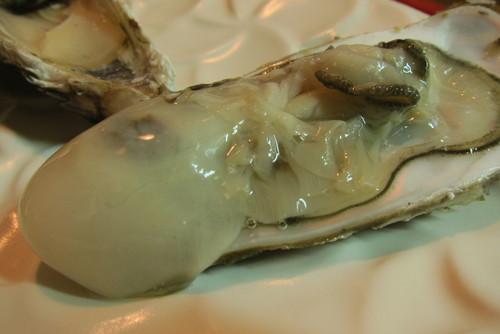 oyster lover._c0153966_17361136.jpg