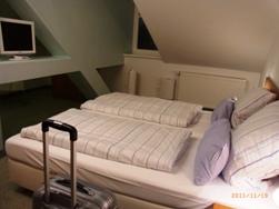 Heidelberg オルガンコンサートとお薦めホテル_e0195766_456533.jpg