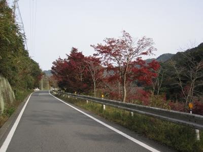 大窪寺へ紅葉見物_e0201281_1852826.jpg