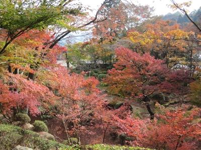 大窪寺へ紅葉見物_e0201281_19563881.jpg