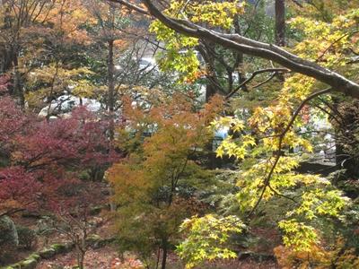 大窪寺へ紅葉見物_e0201281_19572763.jpg
