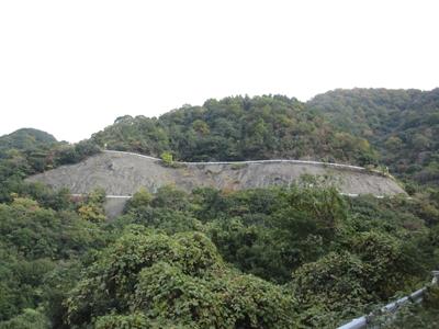 大窪寺へ紅葉見物_e0201281_2021409.jpg