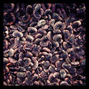 豆を煮る。_d0028589_23263373.jpg
