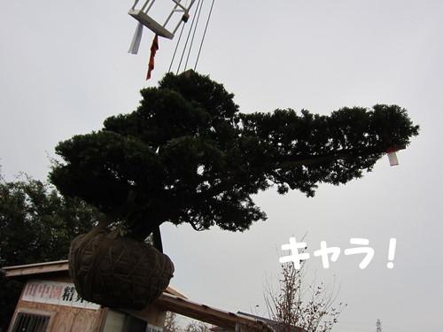 b0200291_1821566.jpg