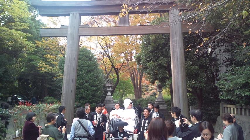 銀杏と結婚式_c0092197_2233729.jpg