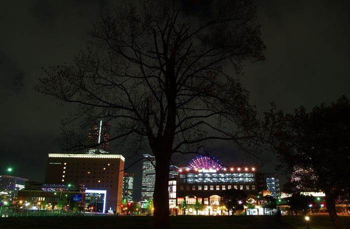 横浜たそがれ_b0103798_21484778.jpg