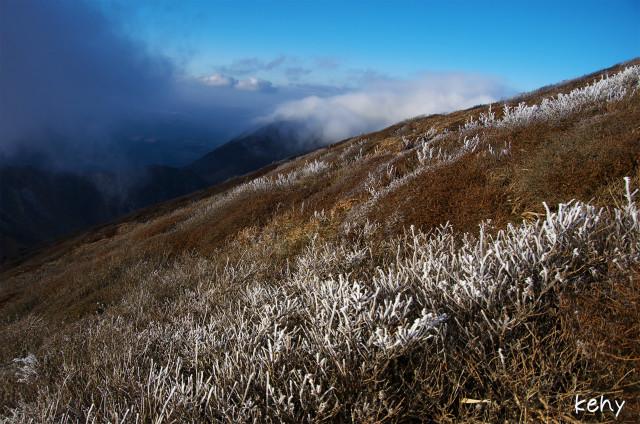 霧氷の季節♪_d0177220_8552550.jpg