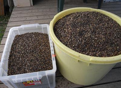 蕎麦のゴミ除去終了_c0063348_6313337.jpg