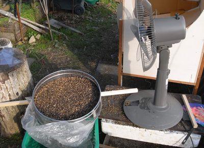 蕎麦のゴミ除去終了_c0063348_6314156.jpg