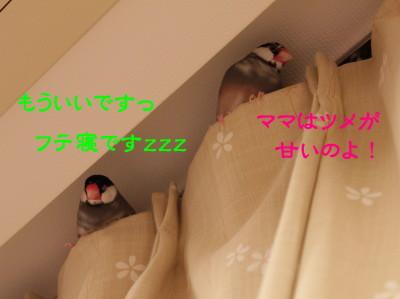 b0158061_22132933.jpg