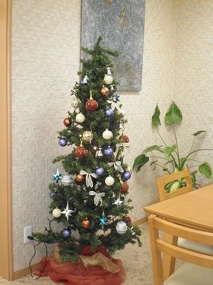 クリスマスの季節です_e0190287_7513276.jpg