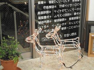 クリスマスの季節です_e0190287_8214870.jpg