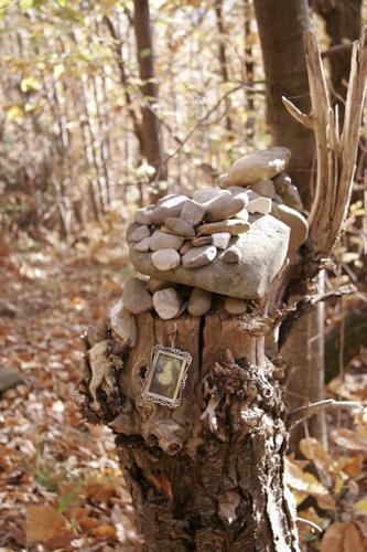 森は遊園地_f0106597_2213672.jpg