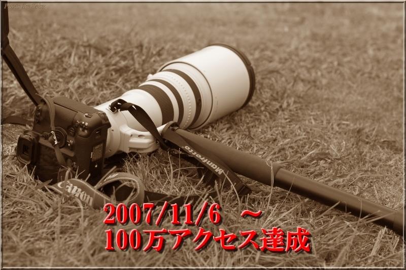 c0145198_195798.jpg