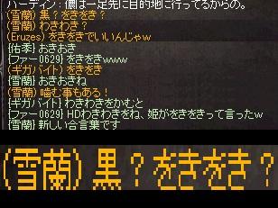 f0072010_336268.jpg