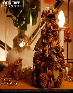 クリスマスに欲しいもの_f0174020_2242937.jpg