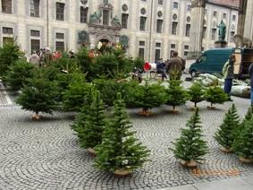 中世のクリスマスマーケット_e0195766_140795.jpg