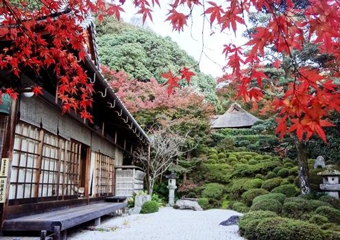 金福寺、モミジ輝く黄昏の庭_b0067283_7514391.jpg