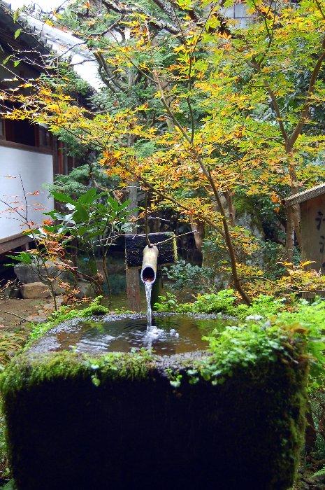 続・♪京都~大原三千院♪ _c0057390_0545365.jpg