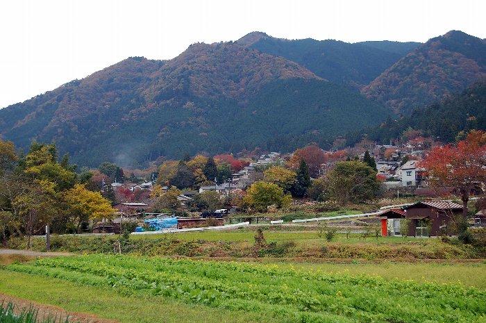 続・♪京都~大原三千院♪ _c0057390_0553595.jpg