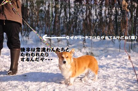 f0212597_1002630.jpg