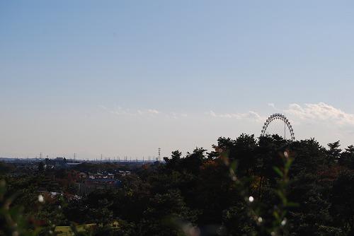 ハチ、富士山初登頂!(^^;_c0124100_23554387.jpg