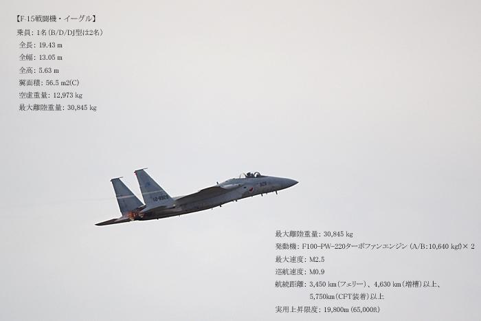 < 岐阜基地航空祭に行ってきた >その1_c0183700_22232239.jpg
